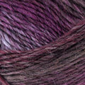 West Yorkshire Spinners Aire Valley Aran Fusions - Moorland (0898)