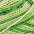 West Yorkshire Spinners Aire Valley Aran - Mojito (0879)