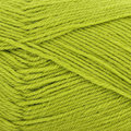 West Yorkshire Spinners Colour Lab DK - Pear Green (186)