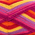 West Yorkshire Spinners Colour Lab DK - Tutti Frutti (914)