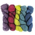 Wonderland Yarns Cheshire Cat 5-Skein Pack - Gyre And Gimble, #46 (46GYREGIMB)