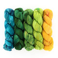 Wonderland Yarns Cheshire Cat 5-Skein Pack - Luminous Collection: End at the Ending, #91 (91END)