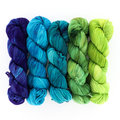 Wonderland Yarns Cheshire Cat 5-Skein Pack - Luminous Collection: Meet in the Middle, #93 (93MEET)