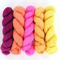 Wonderland Yarns Cheshire Cat 5-Skein Pack - Neons Part 1 (NEONS1)