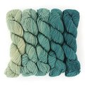 Wonderland Yarns Mad Hatter 5-Skein Pack - Slithy Serpent, #42 (42SLITHY)