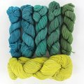 Wonderland Yarns Mad Hatter Combo Kit - #5, Little Busy Bee & Lime To Turquoise Shadow Minis (5)